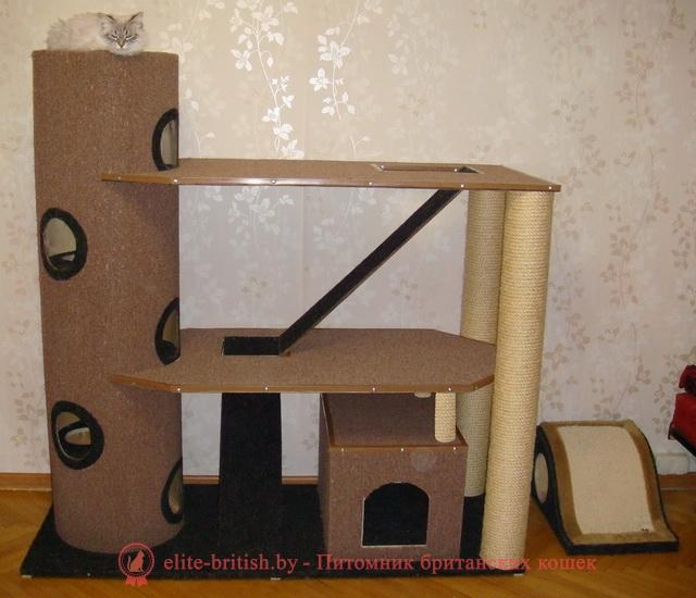 Сделать комплекс для кошки своими руками
