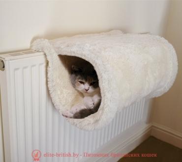 Игровые домики для кошек своими руками