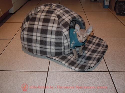 Домик лежанка для собак фото