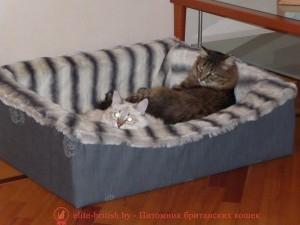 Выкройка лежака для кошки своими руками