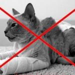 АНТИКОШКА - Москитная сетка для кошек Pet Screen