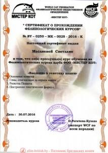 Сертификат об учебе