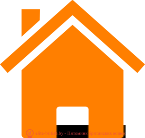 simple-orange-house-md