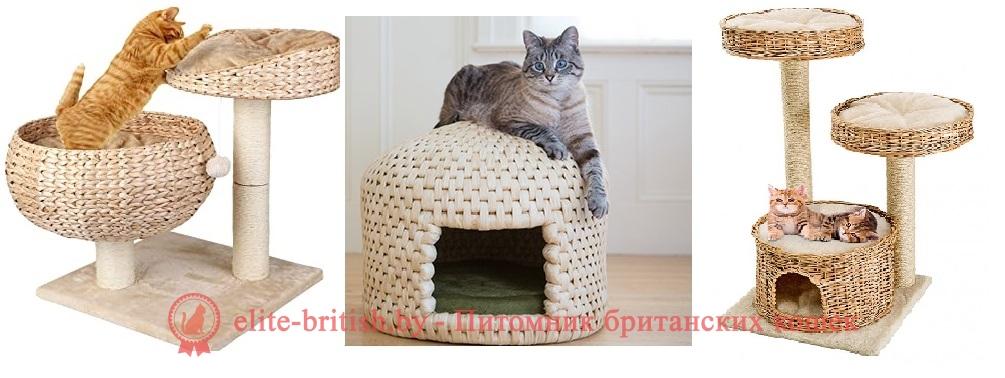 домики для кошек домики для котов когтеточки для кошек когтеточка для котов комплекс для кошек как сделать домик для кошки игровые комплексы для кошек домики и когтеточки для кошек домики для котят лежанки для котов лежанка для кошки как сделать домик для кота лежак для кота домик для кошки фото комплексы для котов лежаки для кошек когтеточки для котят игровой комплекс для кота игровой домик для кошек домик когтеточка для кота когтеточки для кошек фото картинки домиков для кошек когтеточки и комплексы для кошек игрушка когтеточка для кошек комплексы для кошек фото дом когтеточка для кошек домики игровые комплексы для кошек лучшие домики для кошек выкройка домика для кота домики для кошек из дерева какой домик для кошки лучше домик для кошки красивый домики для британских кошек игровой комплекс для кота фото лучшая когтеточка для кошек подвесная лежанка для кошек двухэтажный домик для кошки игровой комплекс для кошек фото домик для британского кота домик для кошки с котятами домики для кошек высокие домики для кошек из ковролина игровые комплексы для котят ковролиновый домик для кошки лежанка для кошки фото большой домик для кошки высокие когтеточки для кошек деревянный домик для кошек как выбрать домик для кошки какая когтеточка для кошек лучше какие когтеточки любят кошки когтеточка для кошек напольная лежаки для кошек фото размеры когтеточки для кошек товары для кошек домики домик для кота из поролона виды когтеточек для кошек домик для кошки размеры когтеточки для котов фото домики для котят фото домики комплексы для кошек