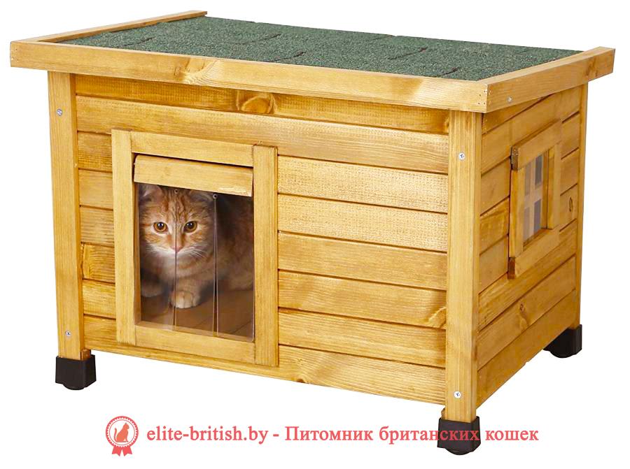 домик для кошки из фанеры своими руками, домик для кошки из фанеры, дом для кошки своими руками из фанеры, родильный домик для кошки, дом для кошки из фанеры, домик для кошки из фанеры чертежи, домики для кошек из фанеры купить, домик для кошки из фанеры и ковролина, фанерные домики для кошек, домик для кошки из фанеры лазерная резка, родильный домик для кошки купить в москве, как сделать домик для кошек из фанеры, родильный дом для кошки, родильный домик для кошки купить, сборный домик из фанеры для кошки, родилка для кошек чертеж, родильный дом для кошки купить, родильный домик для кошки своими руками, домики из фанеры для кошек новосибирск, фанерные дома для кошек новосибирск, дом для кошек чертежи из фанеры, модульные домики для кошек из фанеры купить, складной домик конструктор для кошек из фанеры, размеры домика для кошек из фанеры, родильное место для кошки, модульные домики для кошек из фанеры, домики для кошек с когтеточкой фанера, родильные домики для кошек из фанеры, родильные домики для кошек из фанеры, родильная коробка для кошки, домики для кошек из фанеры фото